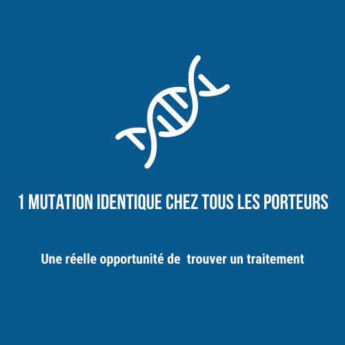 1 mutation identique